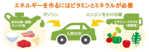 ダイエットPart 5(^^)